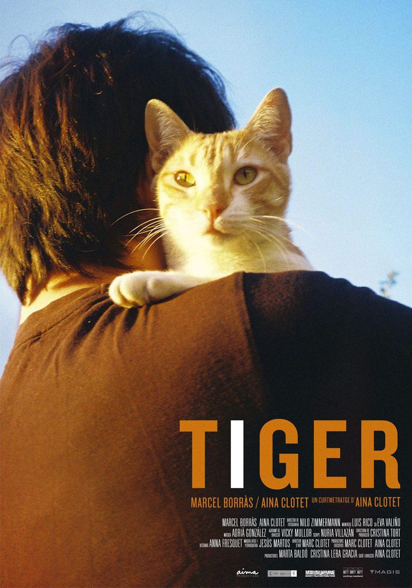 Tiger |Jordi Rins